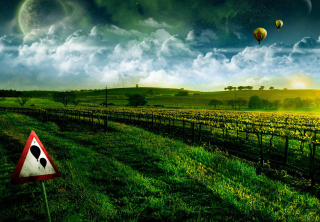 Morning Horizon - Obrázkek zdarma pro Fullscreen Desktop 1024x768