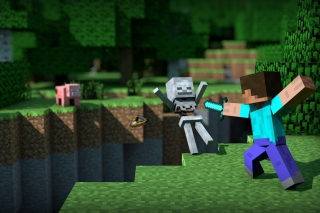 Minecraft Steve Background for Android, iPhone and iPad