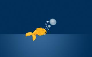 Sleepy Goldfish - Obrázkek zdarma pro Android 960x800