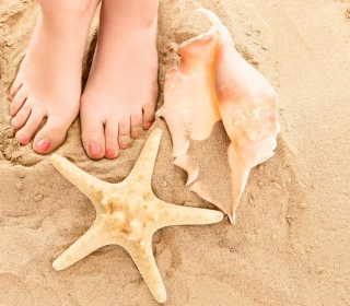Seashell, Seastar And Sandy Feet - Obrázkek zdarma pro iPad 2