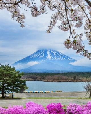 Spring in Japan - Obrázkek zdarma pro 480x800