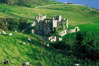 Medieval Castle On Green Hill Picture for Android, iPhone and iPad