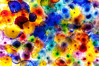 Free Colored Glass Picture for Android, iPhone and iPad