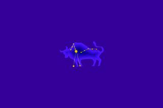 Taurus - Obrázkek zdarma pro Nokia X2-01