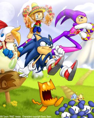 Sonic the Hedgehog - Obrázkek zdarma pro Nokia 206 Asha