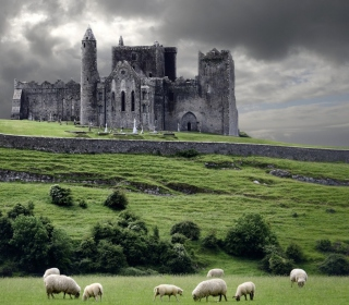 Ireland Landscape With Sheep And Castle - Obrázkek zdarma pro iPad