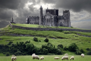 Ireland Landscape With Sheep And Castle - Obrázkek zdarma pro Motorola DROID