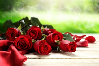 Red Roses for Valentines Day Wallpaper for Android, iPhone and iPad