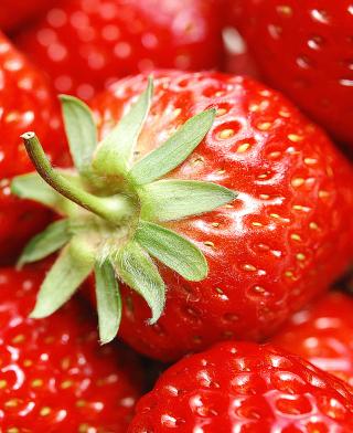 Strawberries - Obrázkek zdarma pro Nokia X1-00