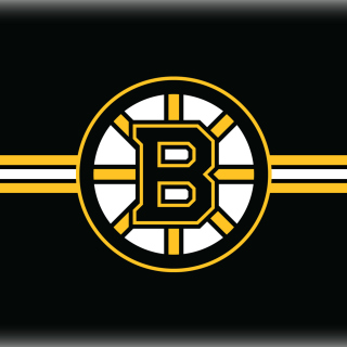 Boston Bruins Hockey - Obrázkek zdarma pro 1024x1024