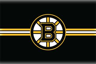 Boston Bruins Hockey - Obrázkek zdarma pro Fullscreen Desktop 1280x960