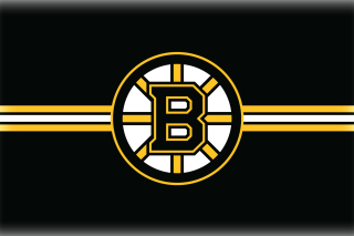 Boston Bruins Hockey - Obrázkek zdarma pro LG P700 Optimus L7