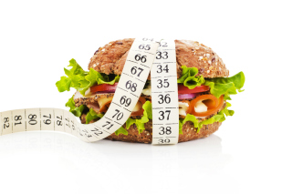 Healthy Diet Burger - Obrázkek zdarma pro LG Optimus L9 P760