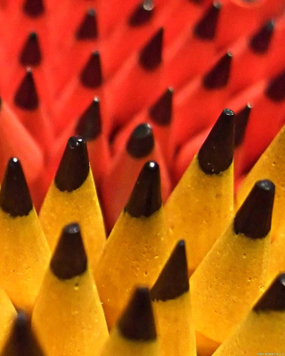 Colored Pencil Set - Obrázkek zdarma pro 320x480
