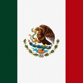 Flag Of Mexico - Obrázkek zdarma pro 208x208