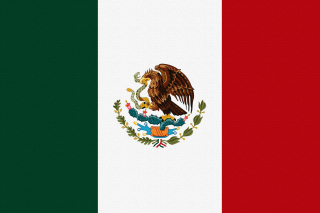 Flag Of Mexico - Obrázkek zdarma pro Samsung Galaxy Tab 3 10.1