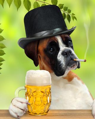 Dog drinking beer - Obrázkek zdarma pro 320x480