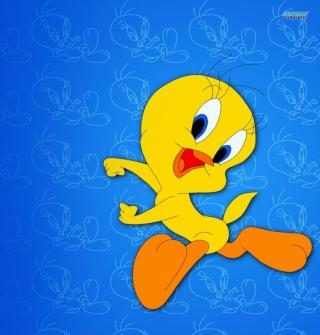 Tweety Looney Tunes - Obrázkek zdarma pro 2048x2048