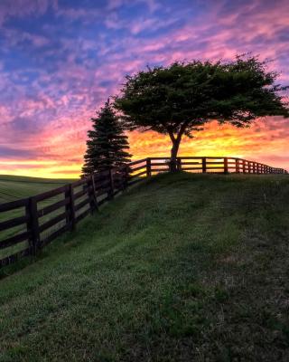 Hills Countryside Sunset - Obrázkek zdarma pro Nokia Asha 310