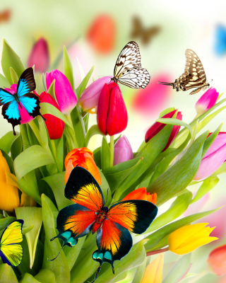 Tulips and Butterflies - Obrázkek zdarma pro iPhone 5