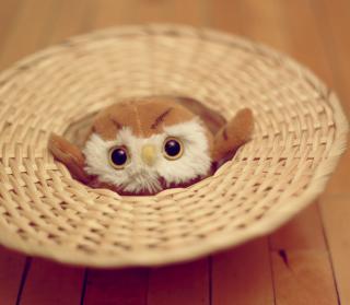 Cute Toy Owl - Obrázkek zdarma pro 1024x1024