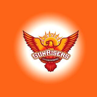 Sunrisers Hyderabad IPL - Obrázkek zdarma pro 208x208