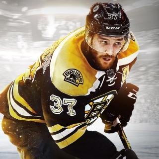 NHL Boston Bruins - Obrázkek zdarma pro 320x320
