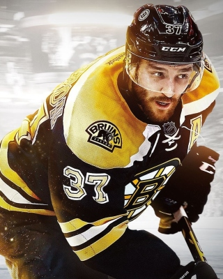 NHL Boston Bruins - Obrázkek zdarma pro Nokia Asha 203
