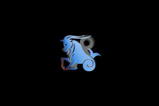 Capricorn - Obrázkek zdarma pro Fullscreen Desktop 1400x1050