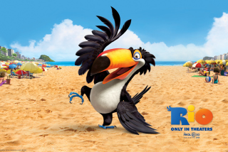 Rafael From Rio Movie - Obrázkek zdarma pro HTC Desire 310
