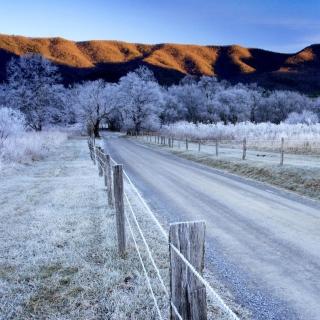 Canada Winter Landscape - Obrázkek zdarma pro iPad mini 2