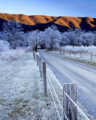 Canada Winter Landscape - Obrázkek zdarma pro Nokia Asha 305