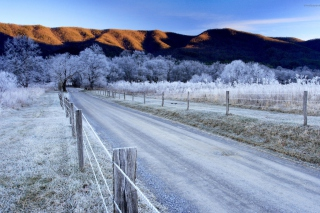 Canada Winter Landscape - Obrázkek zdarma pro HTC Desire 310