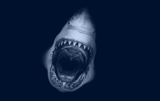 Huge Toothy Shark - Obrázkek zdarma pro Fullscreen Desktop 1024x768