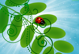 3D Ladybug Background for Android, iPhone and iPad