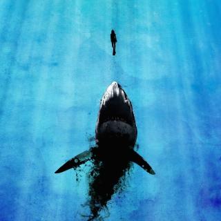 Shark And Swimmer - Obrázkek zdarma pro iPad mini