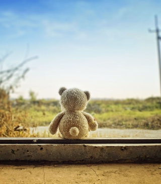 Lonely Teddy Bear - Obrázkek zdarma pro Nokia Asha 501