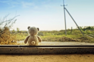 Lonely Teddy Bear Wallpaper for Android, iPhone and iPad
