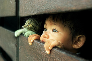 Baby Boy And His Friend Little Kitten - Obrázkek zdarma pro Desktop 1920x1080 Full HD