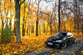 BMW 550X Autumn View Wallpaper for Android, iPhone and iPad