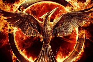 The Hunger Games Mockingjay Wallpaper for Android, iPhone and iPad