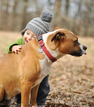 Child With His Dog Friend - Obrázkek zdarma pro 640x960