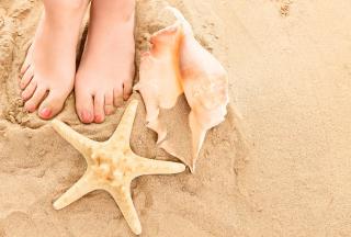 Sun Sand Shells - Obrázkek zdarma pro Android 1280x960