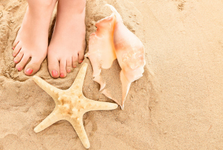 Sun Sand Shells - Obrázkek zdarma pro Samsung Galaxy A3