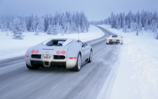 Bugatti Veyron In Winter - Obrázkek zdarma pro 480x320
