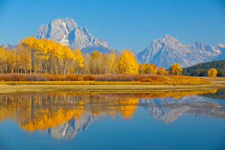 Wyoming, Grand Teton National Park Picture for Android, iPhone and iPad