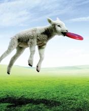 Screenshot №1 pro téma Lamb And Frisby 176x220