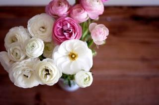 Amazing Ranunculus Bouquet - Obrázkek zdarma pro Fullscreen 1152x864