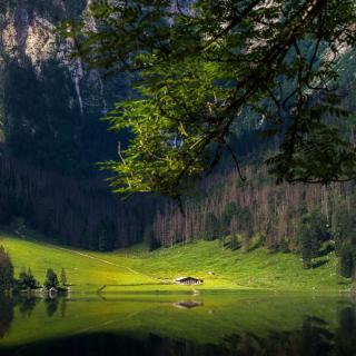Bavarian Alps and Forest - Obrázkek zdarma pro iPad 2