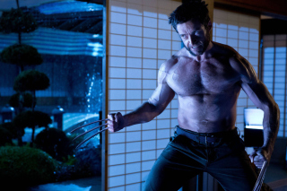Hugh Jackman In The Wolverine - Obrázkek zdarma pro Widescreen Desktop PC 1920x1080 Full HD